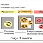 Eradicating Eradication | Research Summary