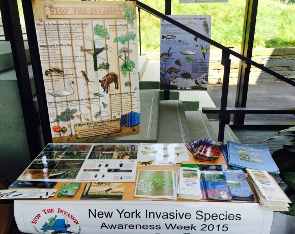 NYISRI and Cornell Plantations Host Tabling Event to Promote Invasive Species Awareness