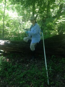 Image of Dr. Aronson in a forest